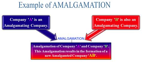what is amalgamation definition meaning and exle