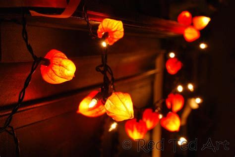 craft lights physalis crafts autumn lights