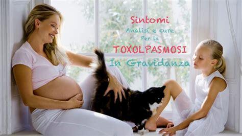 alimentazione in gravidanza toxoplasmosi toxoplasmosi in gravidanza sintomi analisi cure e i