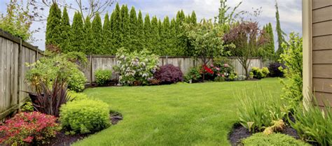 more than curb appeal why landscaping is important lawnmore
