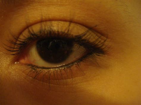 Mac Eye Kohl Eyeliner Review by Mac Eye Kohl Smolder Eyeliner Review Xoxo Emmy