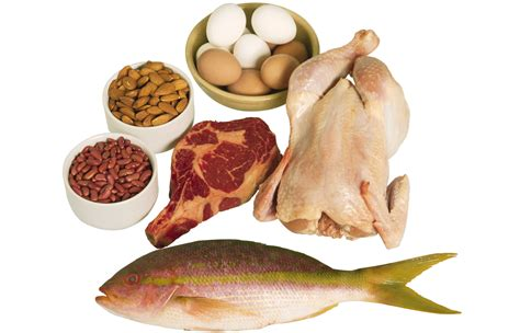 i protein foods the best protein foods for building