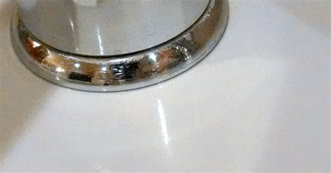 how to clean a white sink how to clean a white sink hometalk