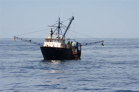 scallop boat bay scallop boat cape cod flickr photo sharing