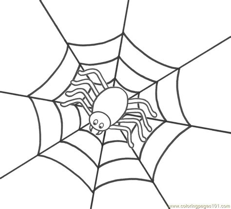 spiders free colouring pages
