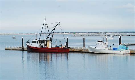 cape cod fishing charters chatham gables inn - Cape Cod Sportfishing