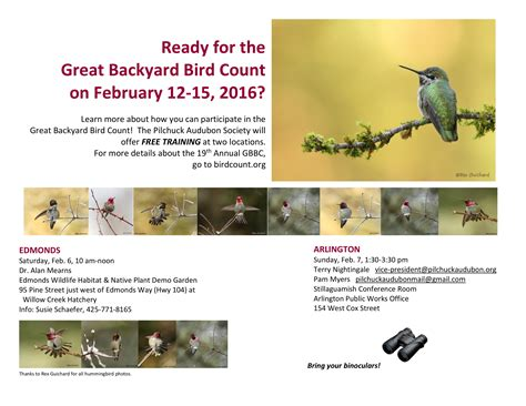 Great Backyard Bird Count 2016 Happening Nearby Workshop To Learn About Great Backyard