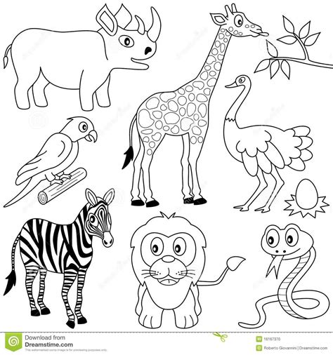 aardvark to zebra animals of africa coloring book books quot quot