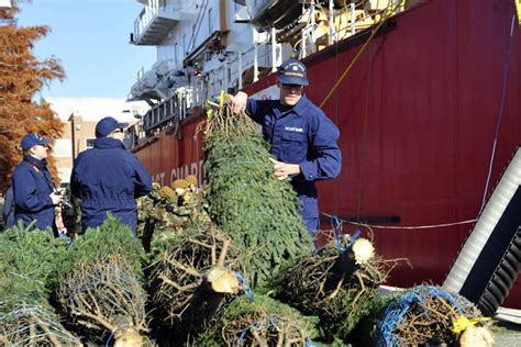 christmas tree delivery chicago recalling the doomed tree ship wosu radio