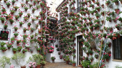 patio de cordoba los patios de c 243 rdoba arte y tradici 243 n festivales sur