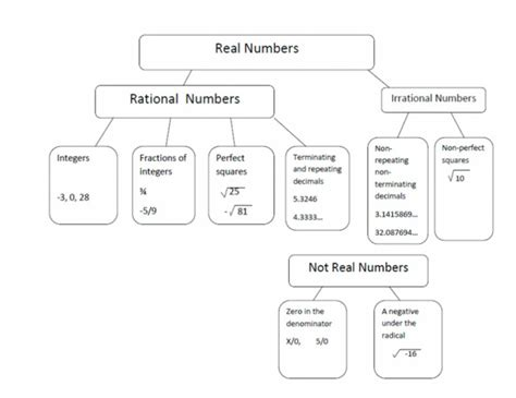 real numbers flowchart worksheet worksheets on rational and irrational numbers