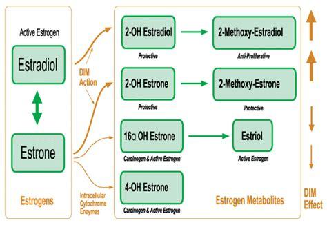 Detox Pathways Zyto E3 by Individual Analytes