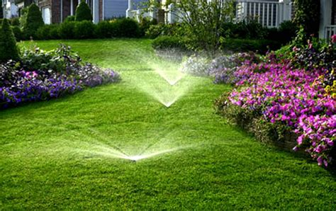 automatic irrigation systems ideas for garden backyard
