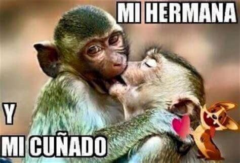 im 193 genes de monos chistosos con frases descargar imagenes de monos feos graciosos para facebook