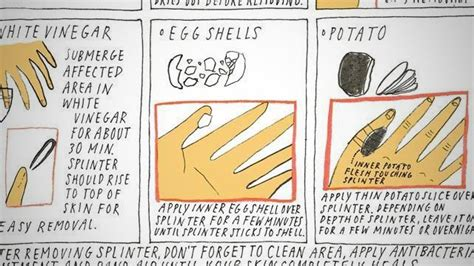How To Remove Splinters With Ease by How To Remove A Splinter With An Eggshell Lifehacker