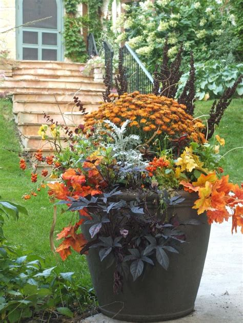 Fall Container Garden Autumn Pinterest Fall Flower Garden Ideas