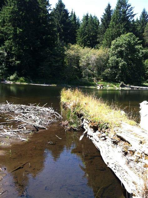 Soapstone Lake Oregon - soapstone lake trail oregon alltrails