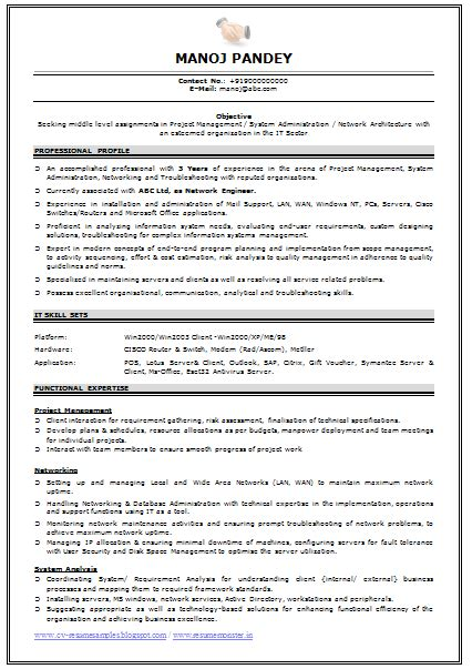 resume examples for experienced professionals foodcity me