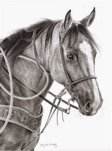 imagenes a lapiz de caballos im 225 genes arte pinturas dibujos de caras o cabezas de