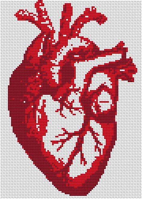 knitting pattern anatomical heart anatomy heart beat cross stitch pdf pattern instant