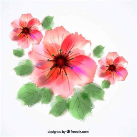free vector watercolor flowers watercolor flowers free vector 123freevectors