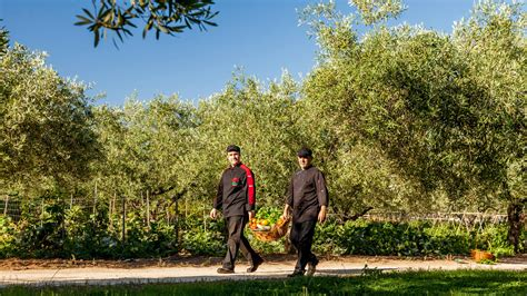 cala ginepro giardini restaurant i giardini di cala ginepro cala ginepro hotels
