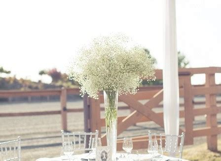 small weddings in northern california estate weddings northern california for small ceremonies a happy day
