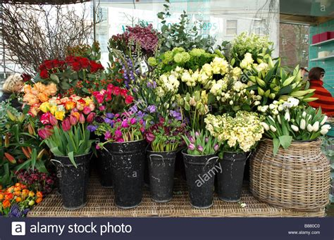 Flowers For Sale by Selection Of Different Flowers For Sale In At