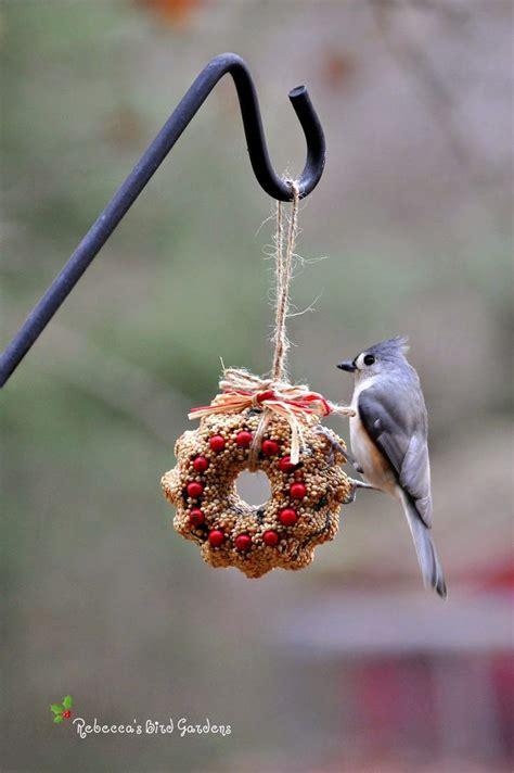 suet feeder diy s bird gardens diy miniature suet and