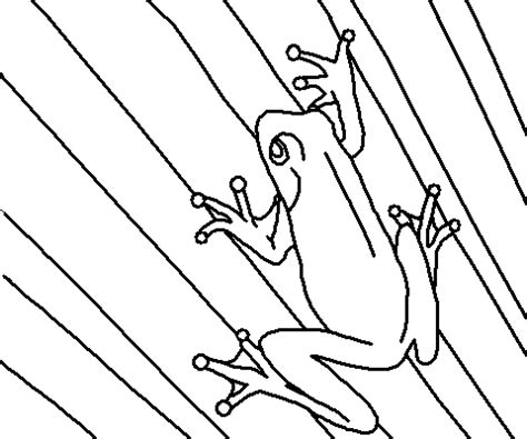 green tree coloring page lindsay lohan design tree frog coloring pages