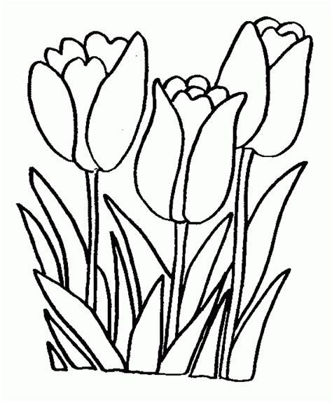 colores para pintar interiores az dibujos para colorear tulipanes para pintar im 225 genes y fotos