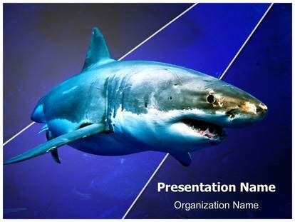 white shark powerpoint template background