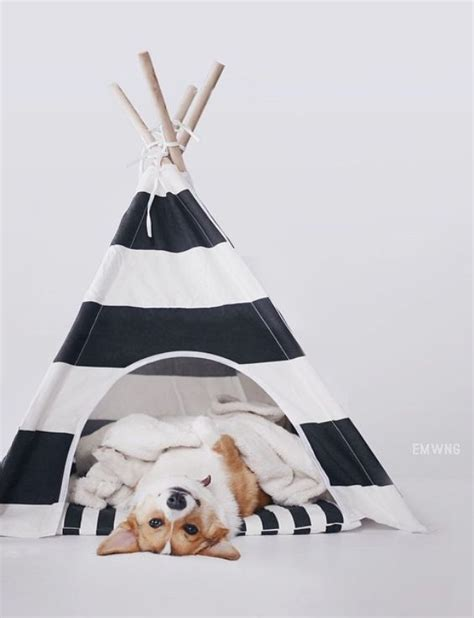 puppy teepee 25 best ideas about tent on diy tent teepee tent for and