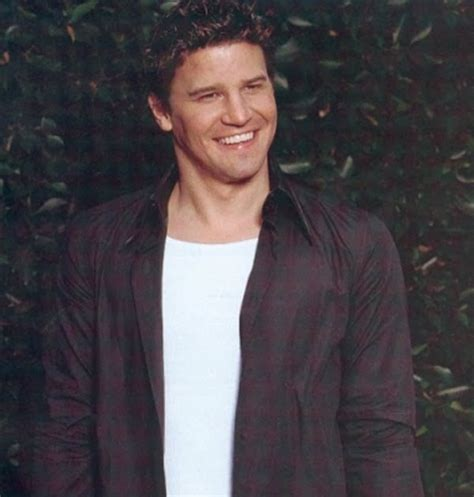 david boreanaz tattoos legend tattos