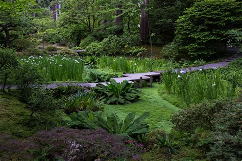 Ubc Botanical Garden Nitobe Memorial Garden Botany Photo Of The Day