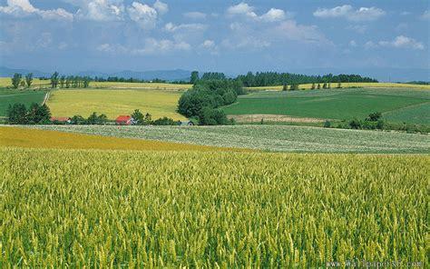 desktop wallpaper farm scenes wallpapersafari