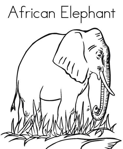 africa coloring pages coloring page animals coloring home