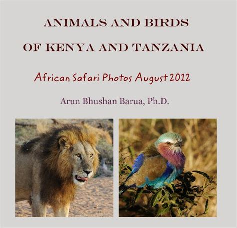 50 top birding in kenya books animals and birds of kenya and tanzania by arun bhushan
