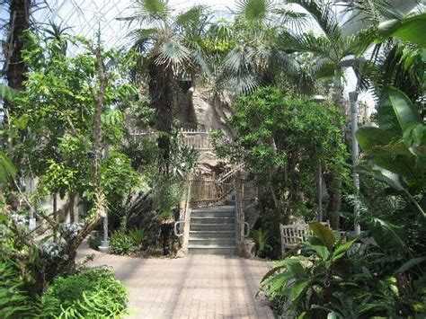 Okc Botanical Garden by Crysal Bridge Tropical Conservatory Picture Of Myriad