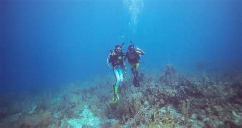 dive belize belize scuba diving certification padi dive courses