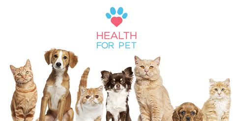 healthy for dogs health for pet