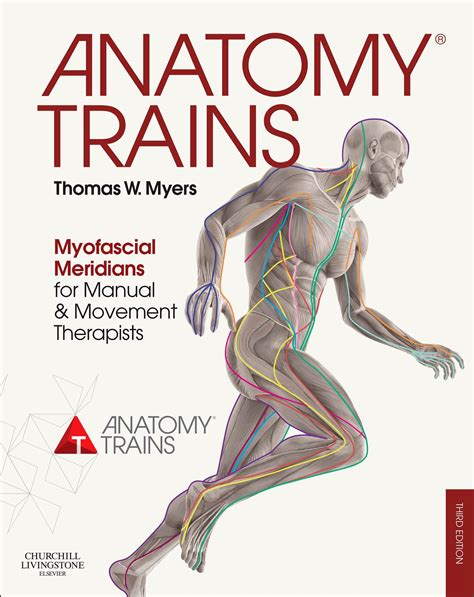 your fascia books anatomy trains 3rd edition cover