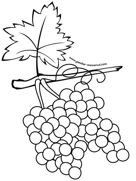 Buah Anggur - Contoh Gambar Mewarnai
