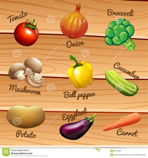 a to z vegetables names with pictures fresh vegetables with names stock vector illustration of