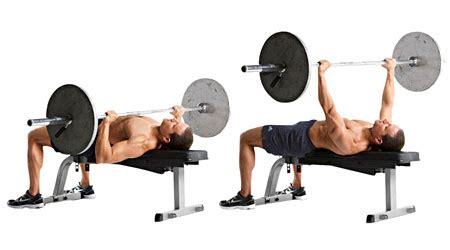 flat bench press barbell incorporate power lifting with whey protein for powerful