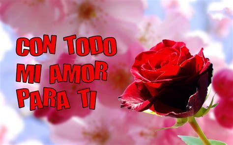 imagenes de amor para ti una rosa con todo mi amor para ti s 243 lo imagenes de amor