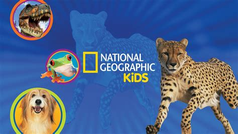 National Geographic Bedding I Kid You Not by National Geographic