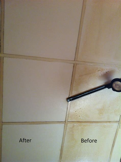 cleaning ceiling tiles restaurant cleaning services regal cleaning of ct