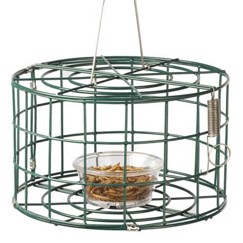 Bird Feeders For Cages baffled cage squirrel proof starling resistant bird feeders