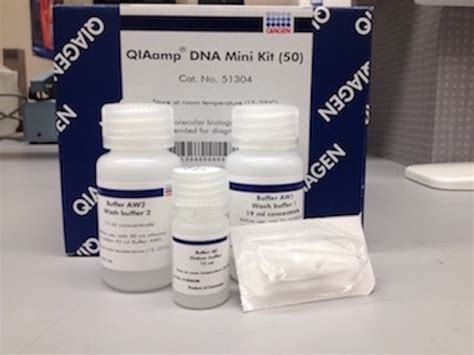 Qiagen Dna Stool Kit by Qia Dna Mini Kit Biocompare Kit Reagent Review